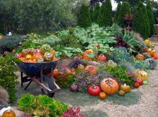 Овощной декор сада