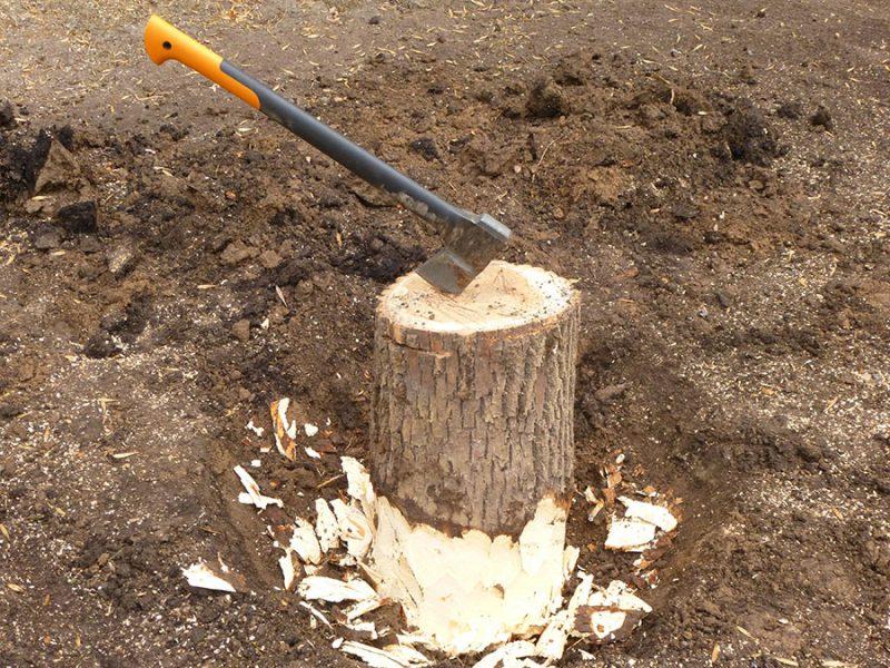 Как без усилий удалить пень на садовом участке?