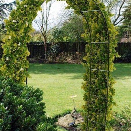 Функциональный и элегантный элемент сада и парка
