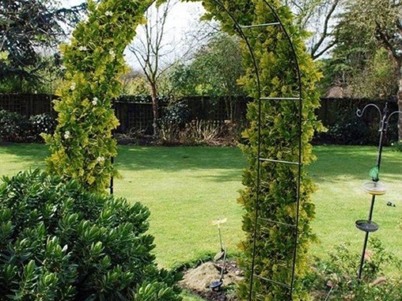 Садовый дизайн подразумевает наличие различных архитектурных форм. Арки вносят в ландшафт немного загадочности и изящности. Разнообразие форм позволяет создать на участке интересные уголки сада, разграничить зоны отдыха и огорода. Классическая садовая арка - конструкция на двух опорах, чаще с округленным верхом, реже прямоугольным соединением перголы.