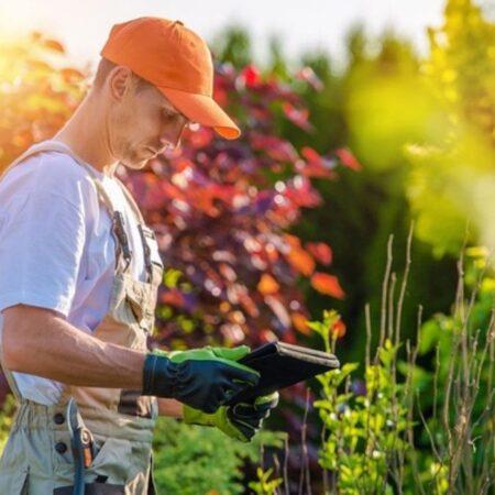 Увлеченный персональный садовник — находка