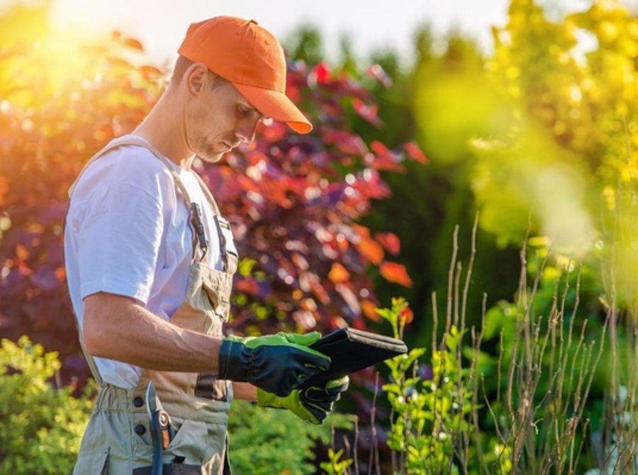 Увлеченный персональный садовник - находка